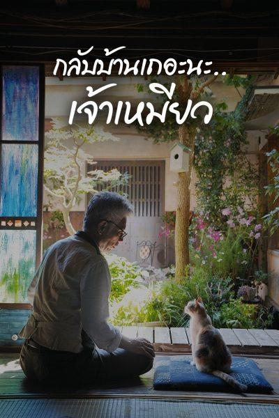 ดูหนังออนไลน์ฟรี Finding Calico (2015) กลับบ้านเถอะนะ…เจ้าเหมียว HD พากย์ไทย