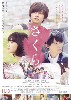 ดูหนังญี่ปุ่น Sakura (2020) เต็มเรื่อง หนังฟรี 4K | MOVIE22HD
